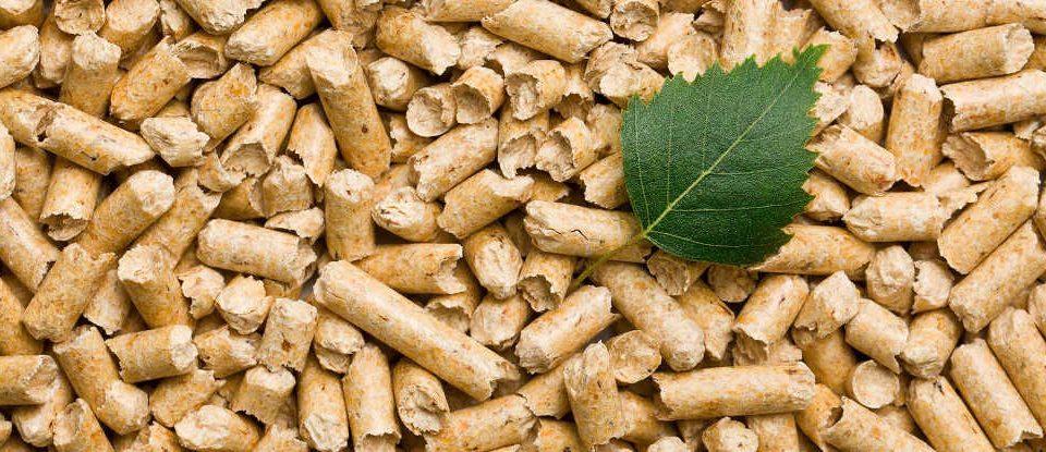 offerte pellet agropoli